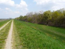 Hosszú túránk 15 km